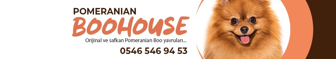 BOOHAUSE